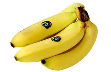 fairtrade-bananas__1461559a